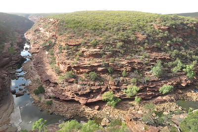 Z Bend in the Murchison Gorge