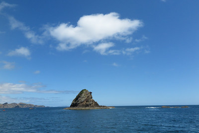 Nine Pin, Bay of Islands