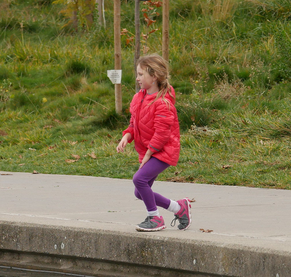 I liked the colors and the sense of motion in this photo.  This girl was one of a group of three with mothers nearby.  They all seemed to be having a fine time in the park.
