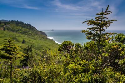 Lost Coast Headlands