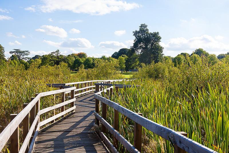 27th Sep 12:  The wetlands bridge