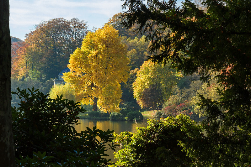 31st October 2016:  Stourhead Gardens at their best