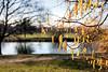20th Feb 13:  Katkins at South Hill Park