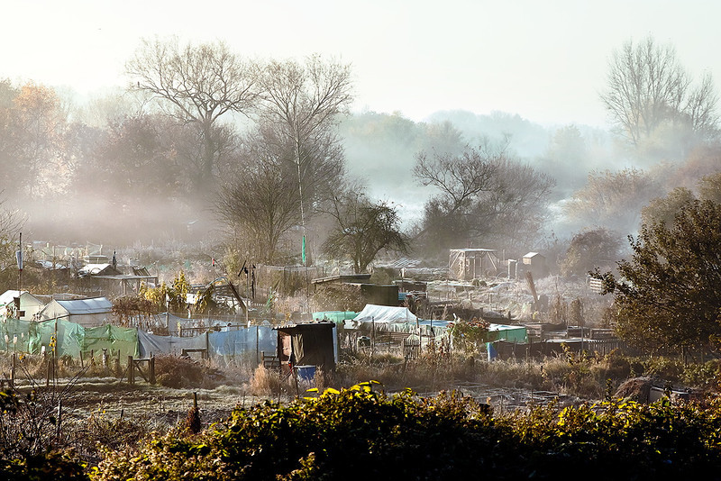11th Nov 12:  After a sharp frost the mist rises from the  allotments visible from the station platform at Twyford
