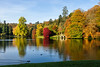 31st Oct 2016:  Reflections and ducks at Stourhead Gardens