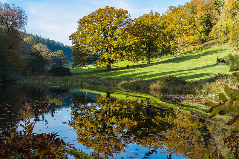 31st Oct 2016:  Reflections at Stourhead Gardens