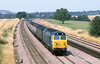 29th Jul 81:  At  1.28pm 50034 'Furious' races through Lower Basildon th the 11.46 from Worcester to Paddington