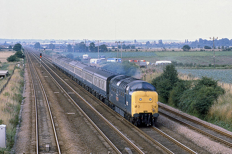 10th Aug 1981:  55010 'Kings Own Scottish Borderer' hurries South at Langford with the 09.10 from Dundee