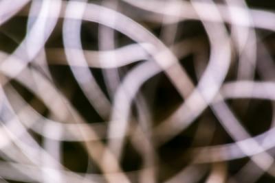 Tangled Web 1