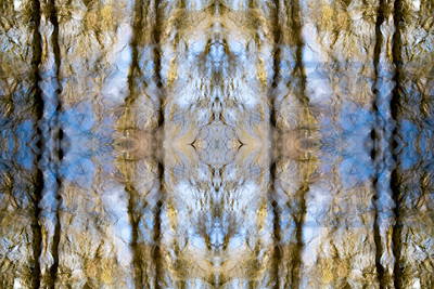 RippleSymmetry 7