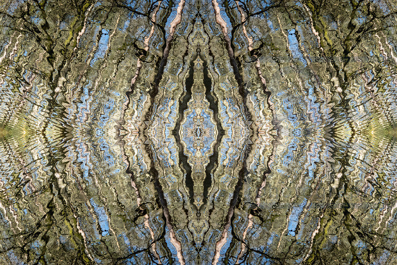 RippleSymmetry 1