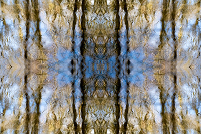 RippleSymmetry 6