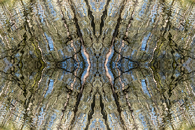 RippleSymmetry RippleSymmetry 4