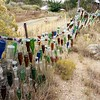 Bottle Fence.