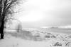 Nature d'hiver