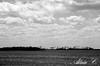 Back Bay NWR marsh