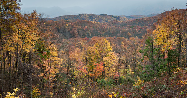 Smoky Mountains Natl Park