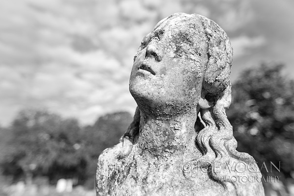 Magnolia Cemetery, Charleston, South Carolina