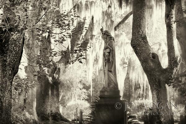 Rural Cemetery, Florida
