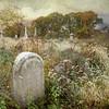 Mount Moriah Cemetery, Philadelphia, Pennsylvania