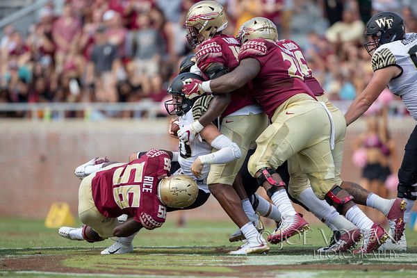 Wake Forest vs. Florida State, October 20, 2018