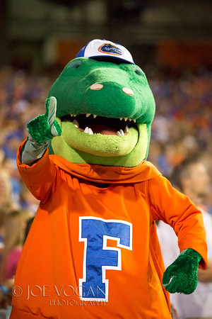 Albert the Alligator in the Swamp, Gainesville, Florida