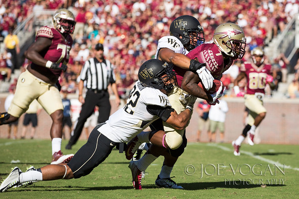 Wake Forest vs. FSU, October 4, 2014