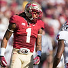 Kelvin Benjamin (FSU) and Juston Burris,  North Carolina State University vs. Florida State University