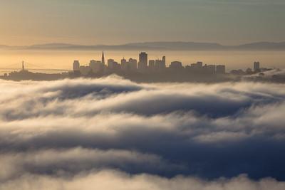 San Francisco Suspended 3286