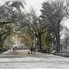 Forsyth Park (circa 1901 and 2011)