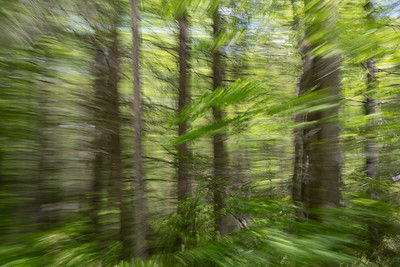 Panning from the Passenger Window No. 2
