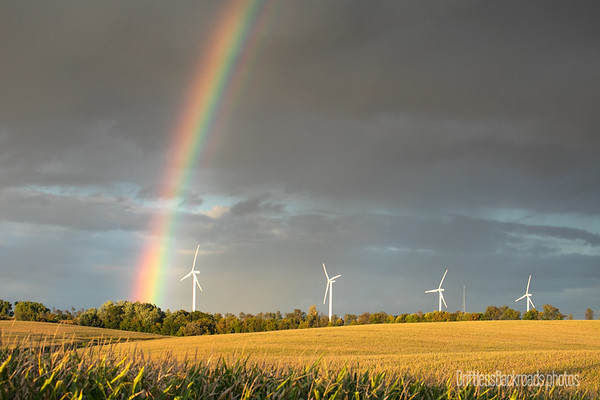 Rainbow over Windmills