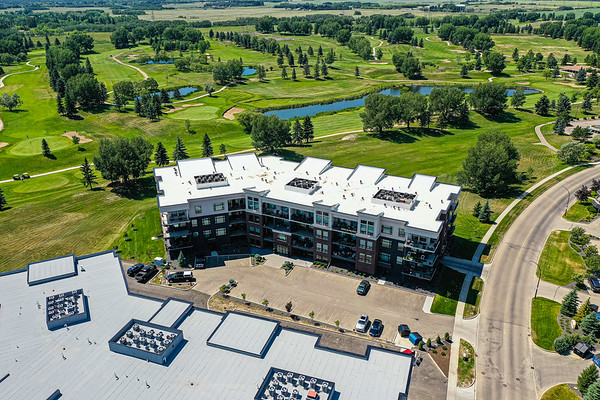Willows Aerial