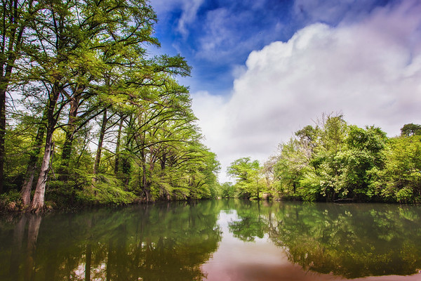 Quiet Wimberly River
