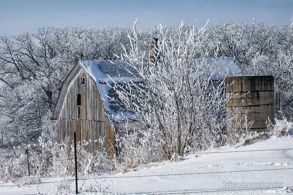 Barn in Frost