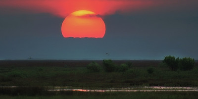 Matagorda Sunrise