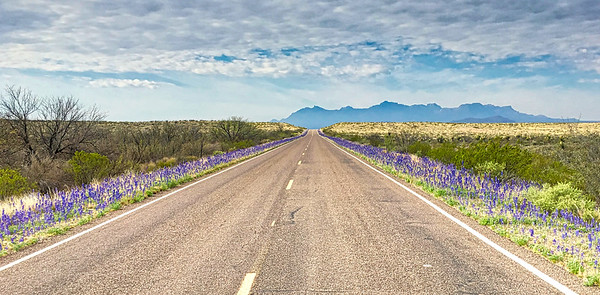 Follow the Blue to Big Bend