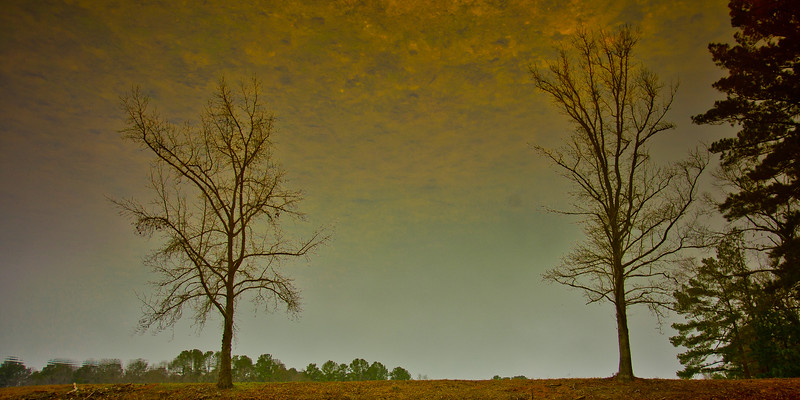 Mysterious Reflection!