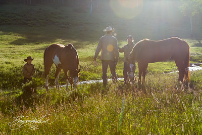 Feeding the horses in the early morning sunlight.  Watching fathers and sons bond and grow together was the best part.  -BP-