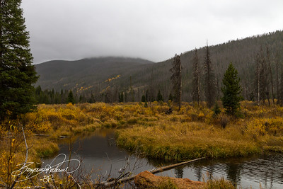 Colorado in the fall.