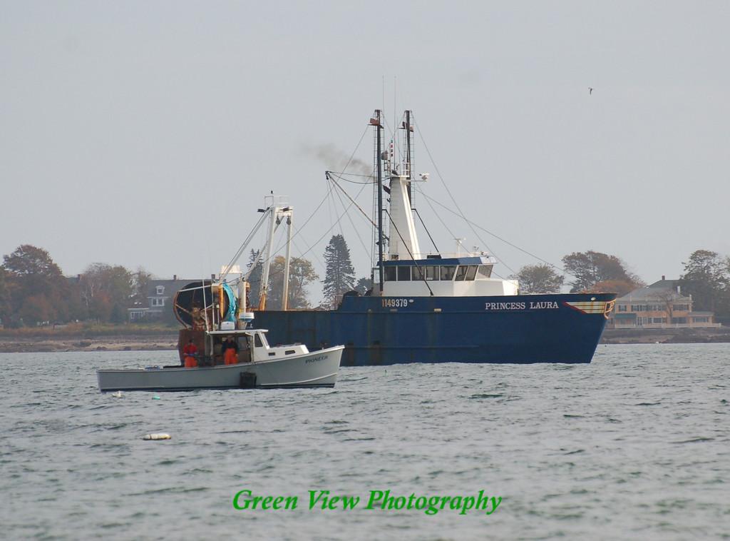 Ocean Fishing