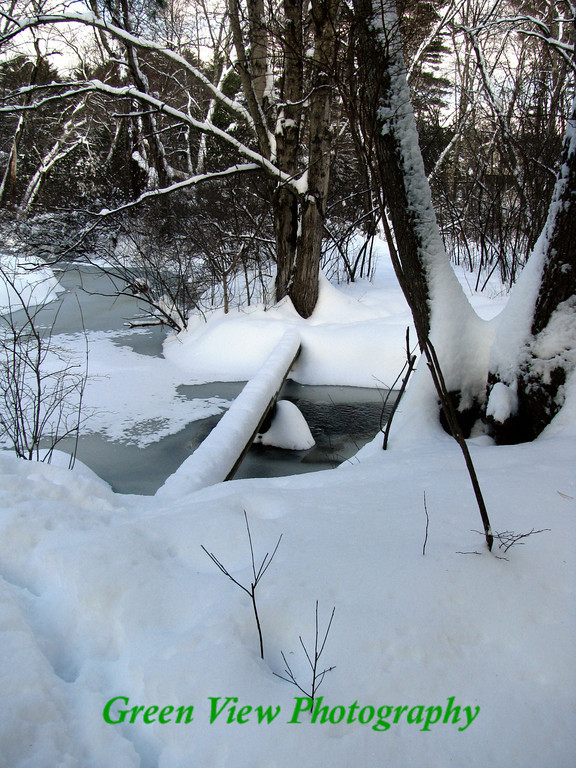 Sudbury Winter Stream