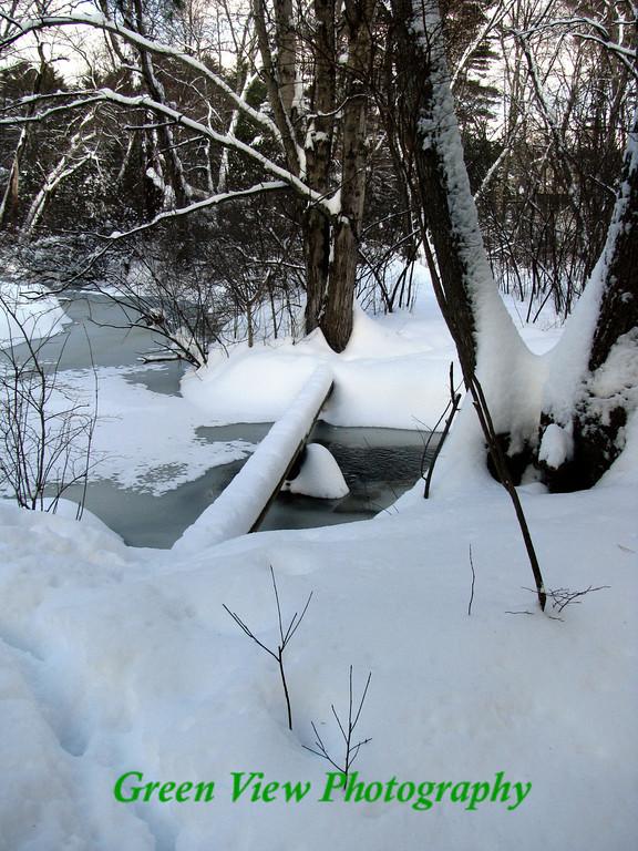 Sudbury Winter Stream