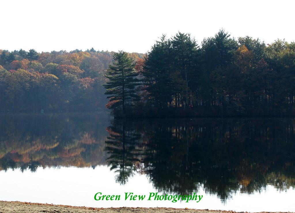 Pine Tree Point