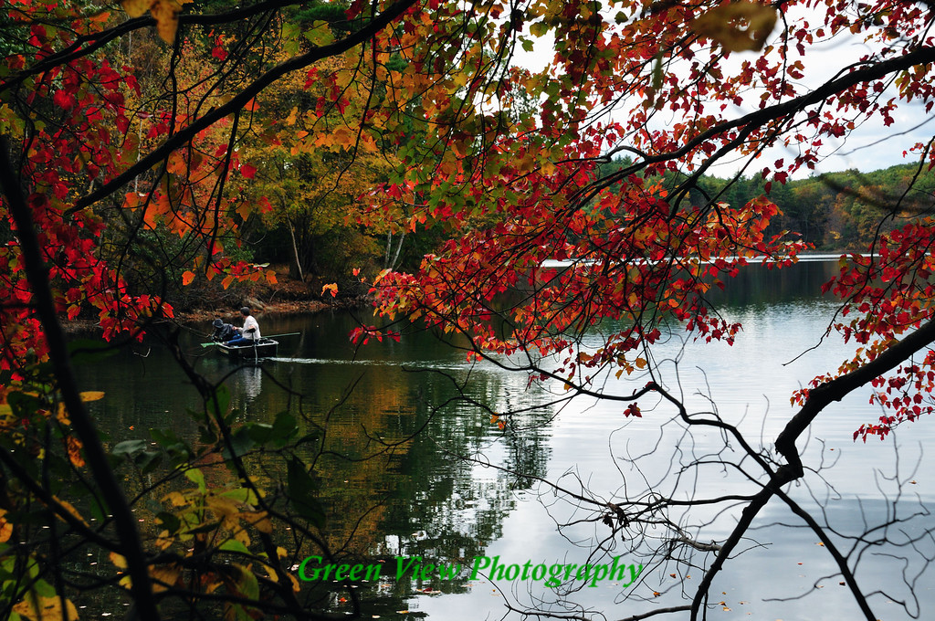 Fisherman on Walden Ponds