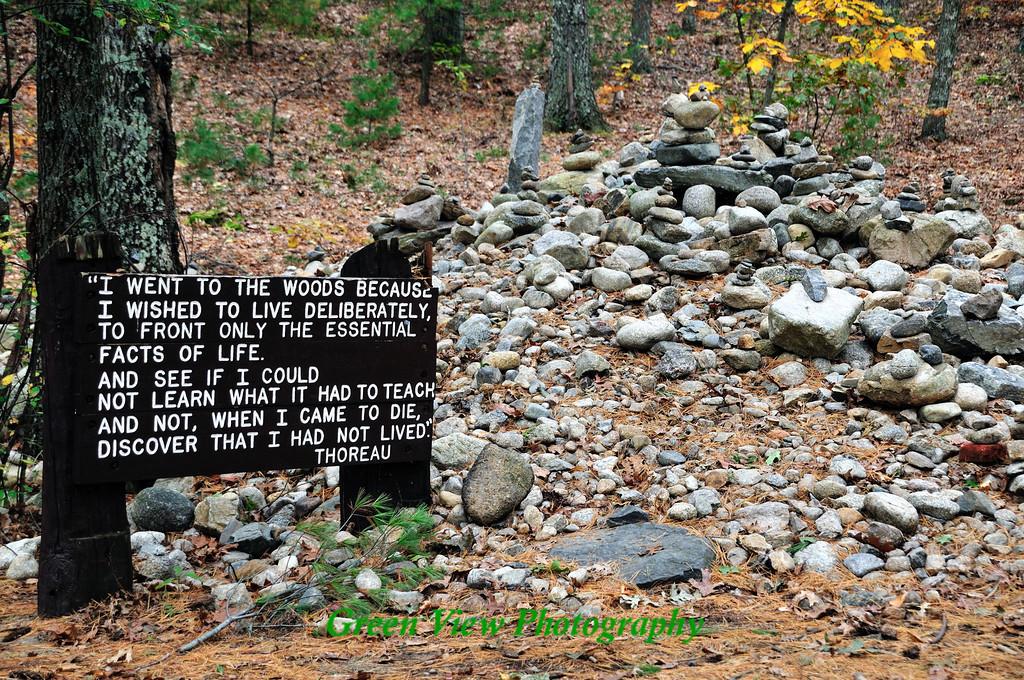 Site of Thoreau's Cabin