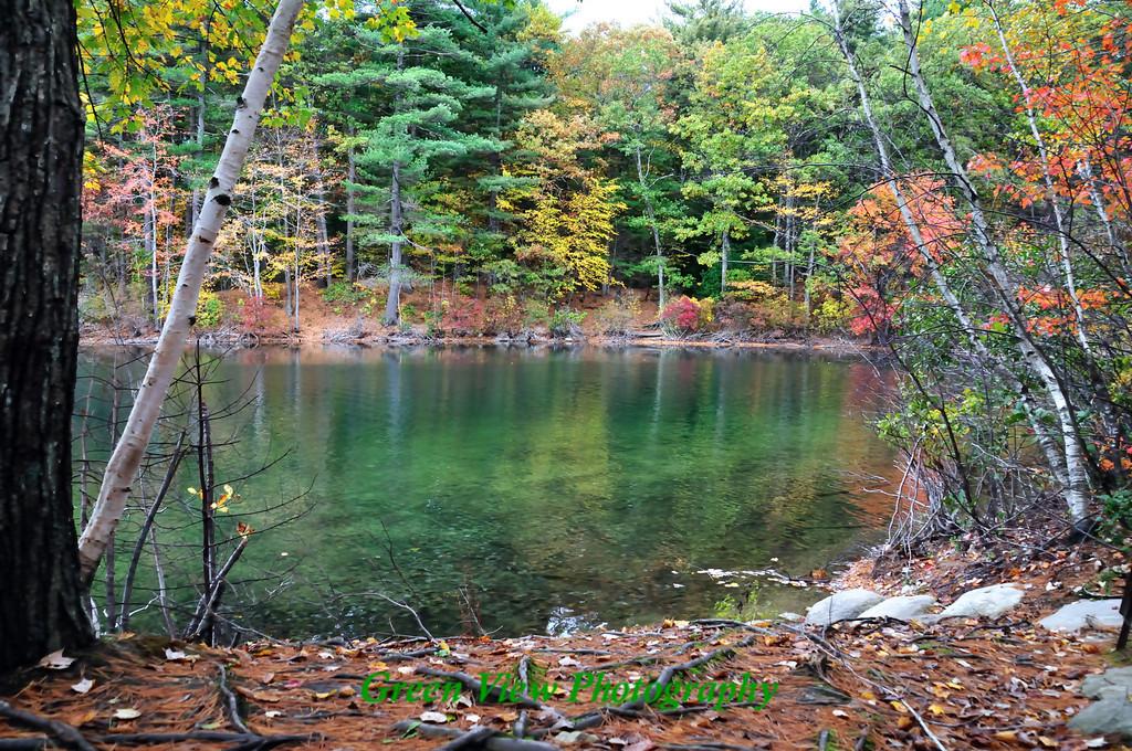 Walden Ponds Reflection