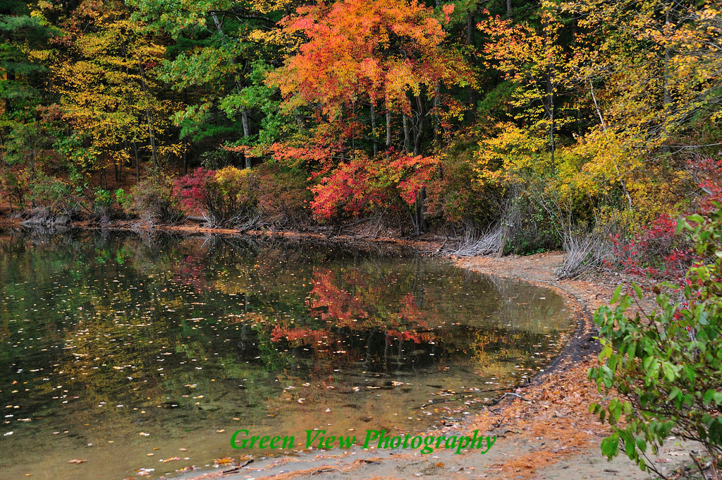 Dazzling Autumn Colors
