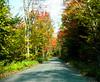 Road to Sugarloaf