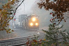 Q022 through the fog and the foliage at MP60, Spencer, MA. 10/31/13 - 598C0009dK